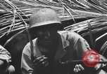 Image of 158th Infantry 2nd Battalion Arawe New Britain Papua New Guinea, 1943, second 43 stock footage video 65675071778