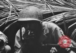 Image of 158th Infantry 2nd Battalion Arawe New Britain Papua New Guinea, 1943, second 46 stock footage video 65675071778
