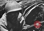 Image of 158th Infantry 2nd Battalion Arawe New Britain Papua New Guinea, 1943, second 48 stock footage video 65675071778