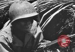 Image of 158th Infantry 2nd Battalion Arawe New Britain Papua New Guinea, 1943, second 49 stock footage video 65675071778