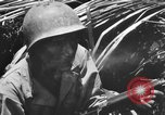Image of 158th Infantry 2nd Battalion Arawe New Britain Papua New Guinea, 1943, second 50 stock footage video 65675071778