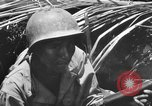 Image of 158th Infantry 2nd Battalion Arawe New Britain Papua New Guinea, 1943, second 51 stock footage video 65675071778