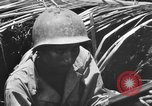 Image of 158th Infantry 2nd Battalion Arawe New Britain Papua New Guinea, 1943, second 52 stock footage video 65675071778