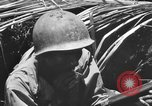 Image of 158th Infantry 2nd Battalion Arawe New Britain Papua New Guinea, 1943, second 53 stock footage video 65675071778