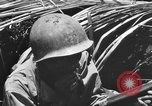 Image of 158th Infantry 2nd Battalion Arawe New Britain Papua New Guinea, 1943, second 54 stock footage video 65675071778