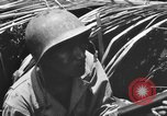 Image of 158th Infantry 2nd Battalion Arawe New Britain Papua New Guinea, 1943, second 55 stock footage video 65675071778