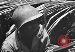 Image of 158th Infantry 2nd Battalion Arawe New Britain Papua New Guinea, 1943, second 56 stock footage video 65675071778