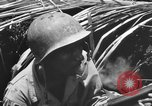 Image of 158th Infantry 2nd Battalion Arawe New Britain Papua New Guinea, 1943, second 57 stock footage video 65675071778