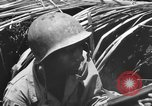 Image of 158th Infantry 2nd Battalion Arawe New Britain Papua New Guinea, 1943, second 58 stock footage video 65675071778