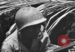 Image of 158th Infantry 2nd Battalion Arawe New Britain Papua New Guinea, 1943, second 59 stock footage video 65675071778