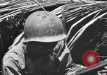 Image of 158th Infantry 2nd Battalion Arawe New Britain Papua New Guinea, 1943, second 60 stock footage video 65675071778