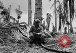 Image of 158th Infantry 2nd Battalion Arawe New Britain Papua New Guinea, 1943, second 61 stock footage video 65675071778
