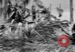 Image of 158th Infantry 2nd Battalion Arawe New Britain Papua New Guinea, 1943, second 62 stock footage video 65675071778