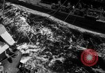 Image of transfer of wounded Pacific Ocean, 1944, second 13 stock footage video 65675071811