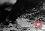 Image of Dense black smoke from raging fire Pacific Theater, 1944, second 33 stock footage video 65675071830
