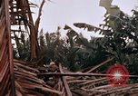 Image of United States 9th Infantry Division South Vietnam, 1967, second 59 stock footage video 65675071836