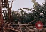 Image of United States 9th Infantry Division South Vietnam, 1967, second 60 stock footage video 65675071836