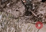 Image of United States 9th Infantry Division South Vietnam, 1967, second 13 stock footage video 65675071839