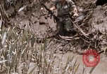 Image of United States 9th Infantry Division South Vietnam, 1967, second 14 stock footage video 65675071839