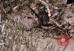 Image of United States 9th Infantry Division South Vietnam, 1967, second 15 stock footage video 65675071839
