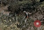 Image of United States 9th Infantry Division South Vietnam, 1967, second 27 stock footage video 65675071839