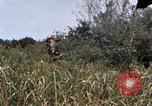 Image of United States 9th Infantry Division South Vietnam, 1967, second 30 stock footage video 65675071839
