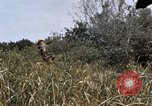 Image of United States 9th Infantry Division South Vietnam, 1967, second 31 stock footage video 65675071839