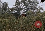Image of United States 9th Infantry Division South Vietnam, 1967, second 48 stock footage video 65675071839