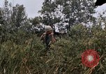 Image of United States 9th Infantry Division South Vietnam, 1967, second 50 stock footage video 65675071839