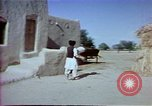 Image of Helmand River Project Afghanistan, 1979, second 15 stock footage video 65675071854