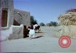 Image of Helmand River Project Afghanistan, 1979, second 16 stock footage video 65675071854