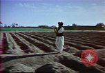 Image of Helmand River Project Afghanistan, 1979, second 20 stock footage video 65675071854