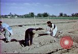 Image of Helmand River Project Afghanistan, 1979, second 29 stock footage video 65675071854