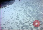 Image of Helmand River Project Afghanistan, 1979, second 53 stock footage video 65675071855