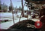 Image of Helmand River Project Afghanistan, 1979, second 47 stock footage video 65675071856