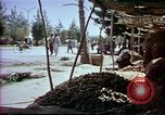 Image of Helmand River Project Afghanistan, 1979, second 49 stock footage video 65675071856