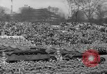 Image of Hitler 50th birthday parade Berlin Germany, 1939, second 33 stock footage video 65675071888