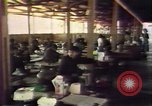 Image of South East Asian refugees Europe, 1980, second 51 stock footage video 65675071916