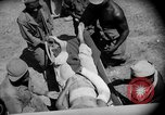 Image of Air evacuation of wounded U.S. troops from Luzon Leyte Philippines, 1945, second 38 stock footage video 65675071951