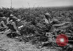 Image of independence celebrations France, 1944, second 49 stock footage video 65675071976