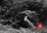 Image of Allied troops France, 1944, second 5 stock footage video 65675072017