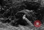 Image of Allied troops France, 1944, second 6 stock footage video 65675072017