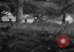 Image of Allied troops France, 1944, second 8 stock footage video 65675072017