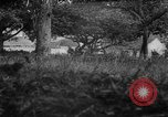 Image of Allied troops France, 1944, second 9 stock footage video 65675072017