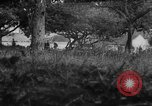 Image of Allied troops France, 1944, second 10 stock footage video 65675072017
