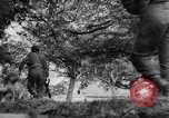 Image of Allied troops France, 1944, second 13 stock footage video 65675072017
