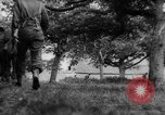 Image of Allied troops France, 1944, second 18 stock footage video 65675072017