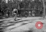 Image of training Florida United States USA, 1943, second 60 stock footage video 65675072035