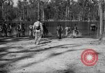 Image of training Florida United States USA, 1943, second 61 stock footage video 65675072035