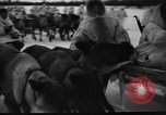 Image of Russian troops Europe, 1943, second 14 stock footage video 65675072037
